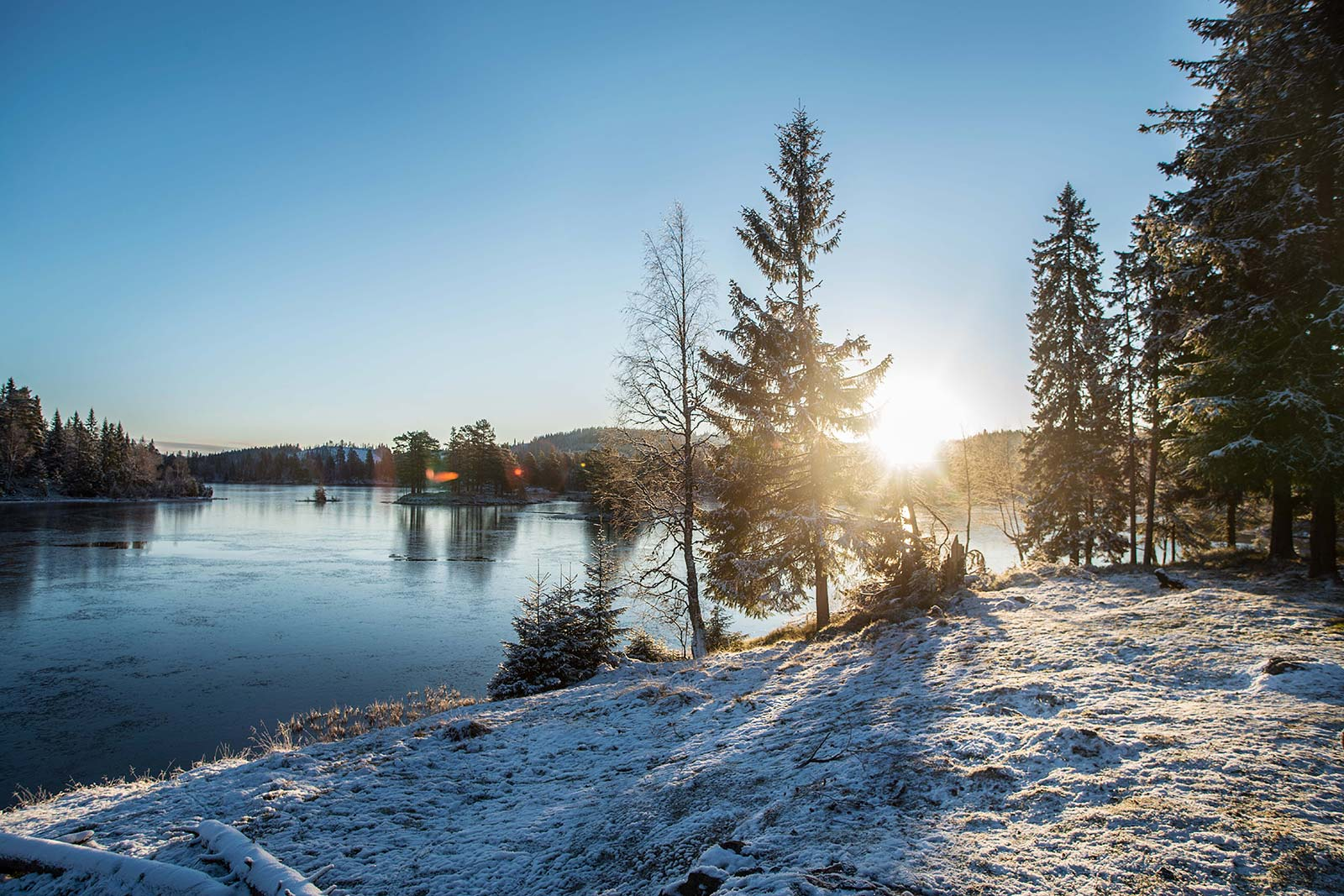 Finnemarka - foto Roger Henriksen